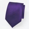 Krawatte violett.png